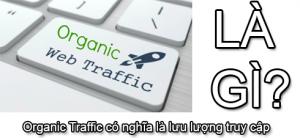 Organic traffic là gì?